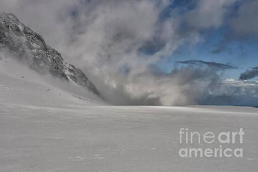 Patricia Hofmeester - Franz Josph Glacier