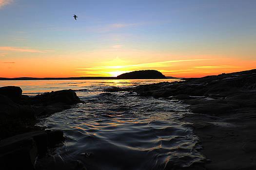 Frechman Bay Tide by David Yunker