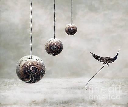 Free by Jacky Gerritsen