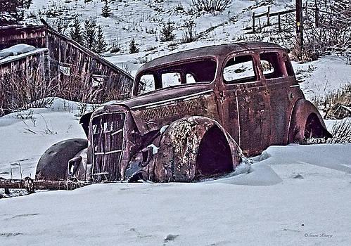 Free Parking by Susan Kinney