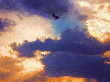 Free by Jeff Breiman
