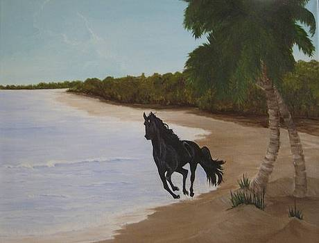 Freedom by Linda Bennett