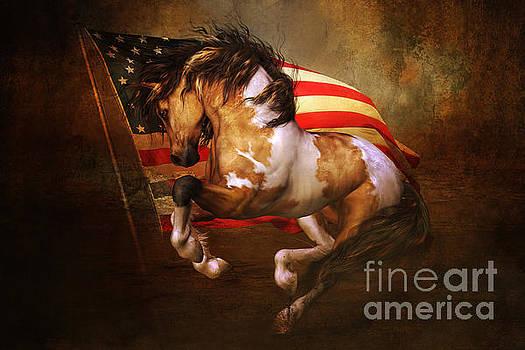 Freedom Run by Shanina Conway