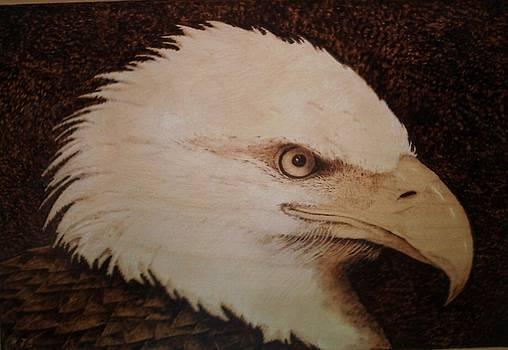Freedoms Eye by Freddy  Smith