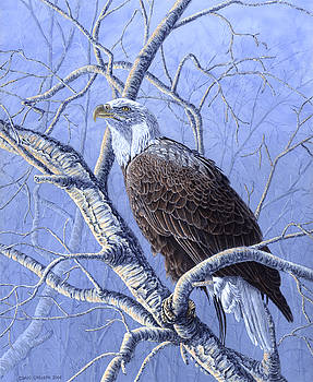 Freedom's Spirit - Bald Eagle by Craig Carlson