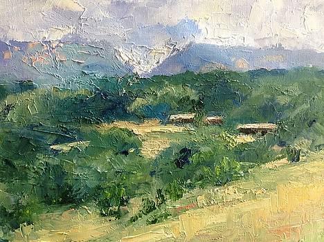 French Countryside by Carol Hopper