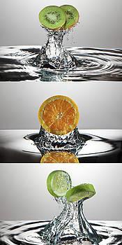 FreshSplash Citrus Triptych by Steve Gadomski