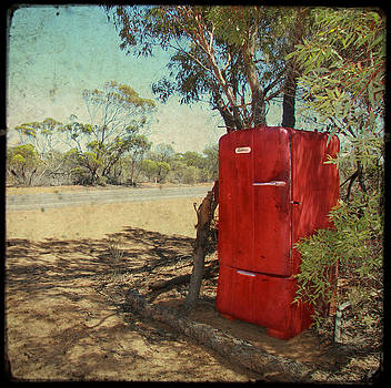 Fridge in the Outback by Sonia Stewart