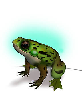 Frog by Ritu Raj