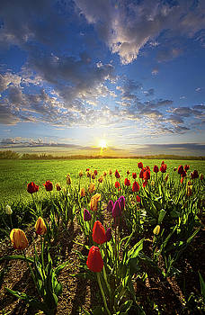 From The Very First Moment by Phil Koch