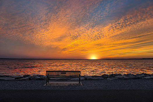 Front Row Seat by Robin-lee Vieira
