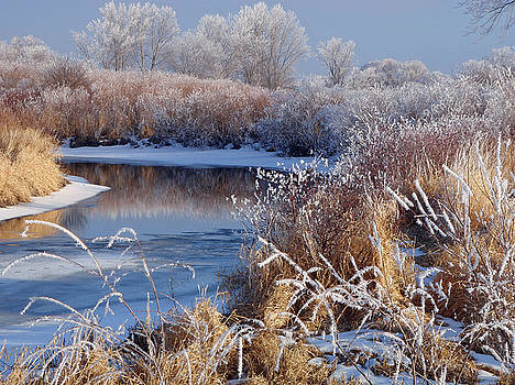 Frosted River by James Peterson