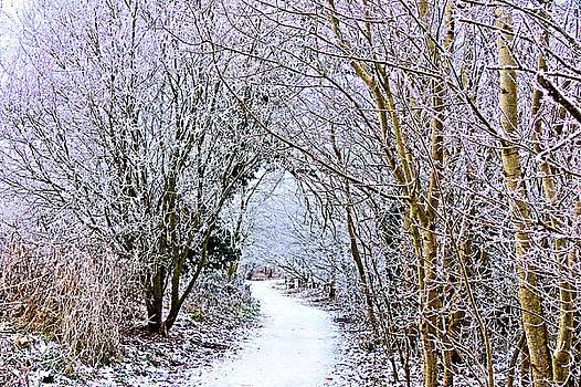 Frosty Curtain's by Kim Shatwell-Irishphotographer