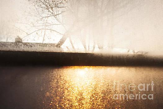 Frosty Window by Jonathan Welch