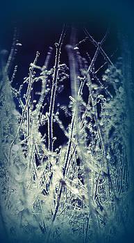 Frozen In Time by Sarah Hamlin