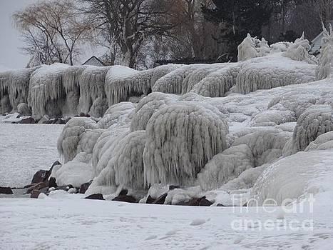 Frozen  by Linda Xydas