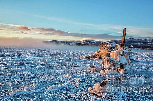 Frozen Morning by Danny Nestor