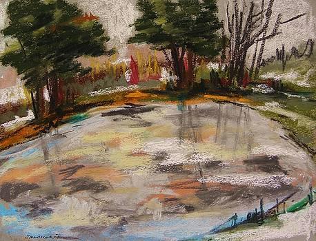 Frozen Pond 2 by John Williams