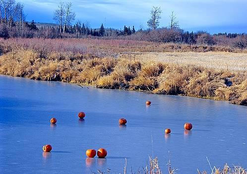 Frozen River by Brian Sereda