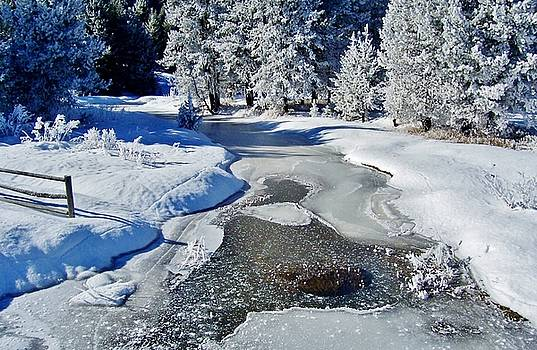 Frozen River on Ranch by Peggy Leyva Conley
