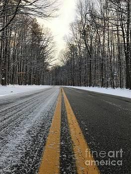 Frozen Road in Life by Michael Krek