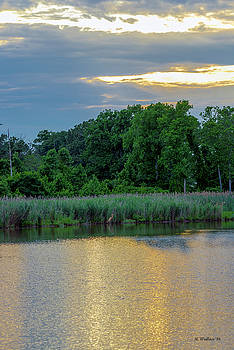 Ft Smallwood Pond by Brian Wallace