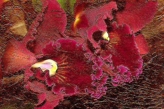 Fuchsia Orchids Gold Leaf Look by Phyllis Denton