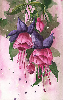 Fuchsia Painting by Alison Fennell