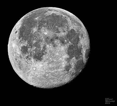 Full Moon by David Millenheft
