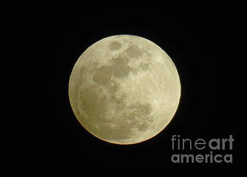 Full Moon February 2017 by D Hackett