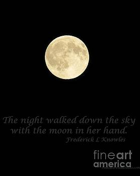 Full Moon Night Walk by Helen Campbell