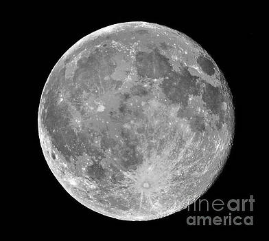 Full Moon by Roger Becker