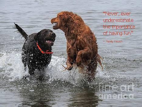 Fun at the Beach by Peggy J Hughes