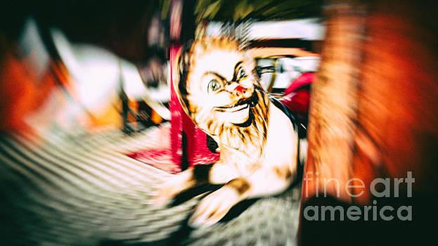 FUNFAIR - LION - Carousel Blur by Pete Edmunds