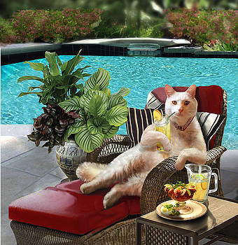 Funny Pet  Vacationing Kitty by Gina Femrite