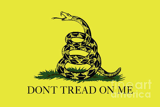 Gadsden Dont Tread On Me Flag Authentic version by Bruce Stanfield