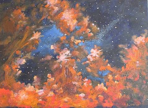 Galactic Storm by Elizabeth Lane