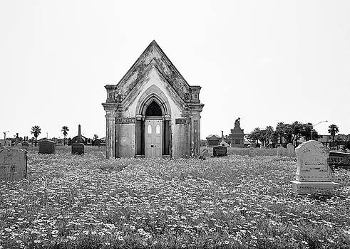 Galveston Old City Cemetery by Steven Michael