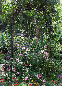 Anne Cameron Cutri - Garden Arch