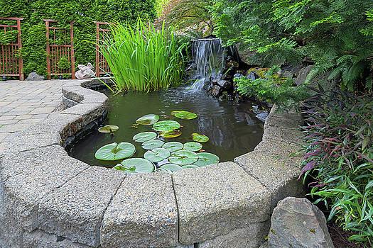 Garden Backyard Pond with Waterfall by Jit Lim