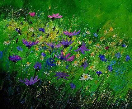 Garden flowers 7661 by Pol Ledent