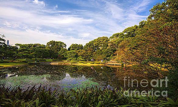Garden in Tokyo by Pravine Chester