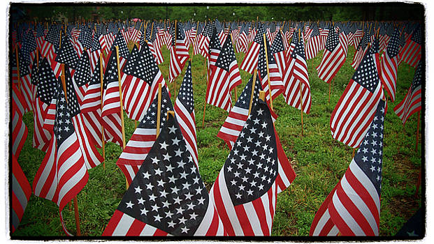 Garden Of Flags - Flag Day - Military Heroes - Boston Common by Joann Vitali