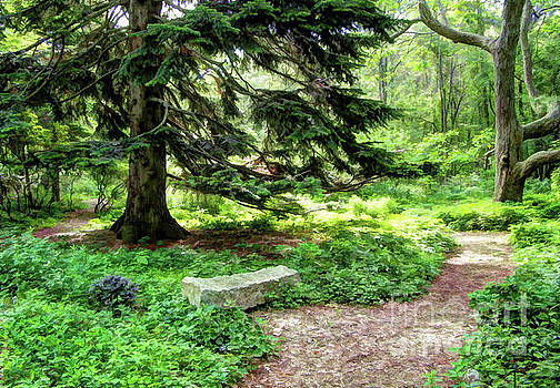 Garden Path by Betsy Zimmerli