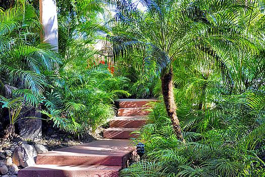 Garden Path by Jim Walls PhotoArtist