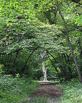 Garden Pathway by Sue Houston