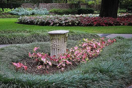 Paulette Thomas - Garden