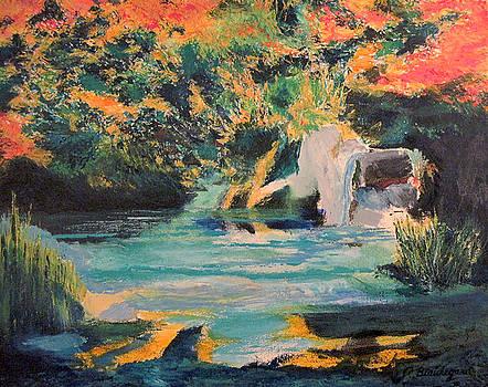 Garden Pond by Richard Beauregard