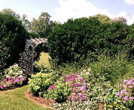 Garden View by Diana Chason
