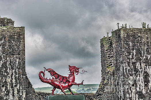 Steve Purnell - Gareth The Dragon 1